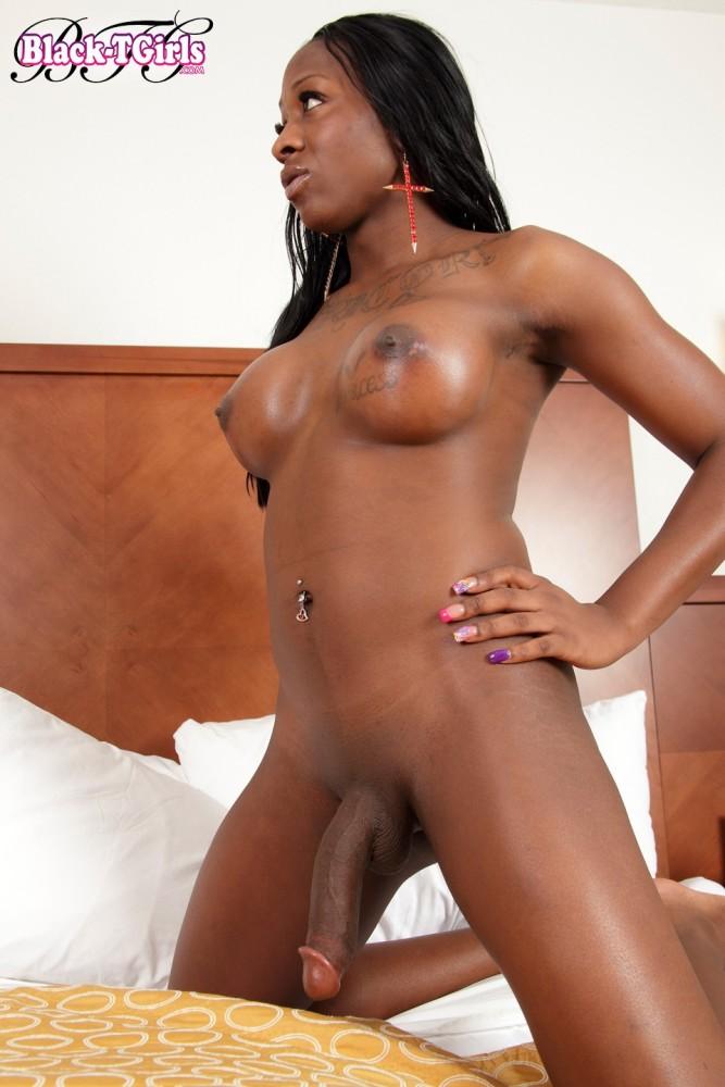 Shemale Ebony Free Porn Pics