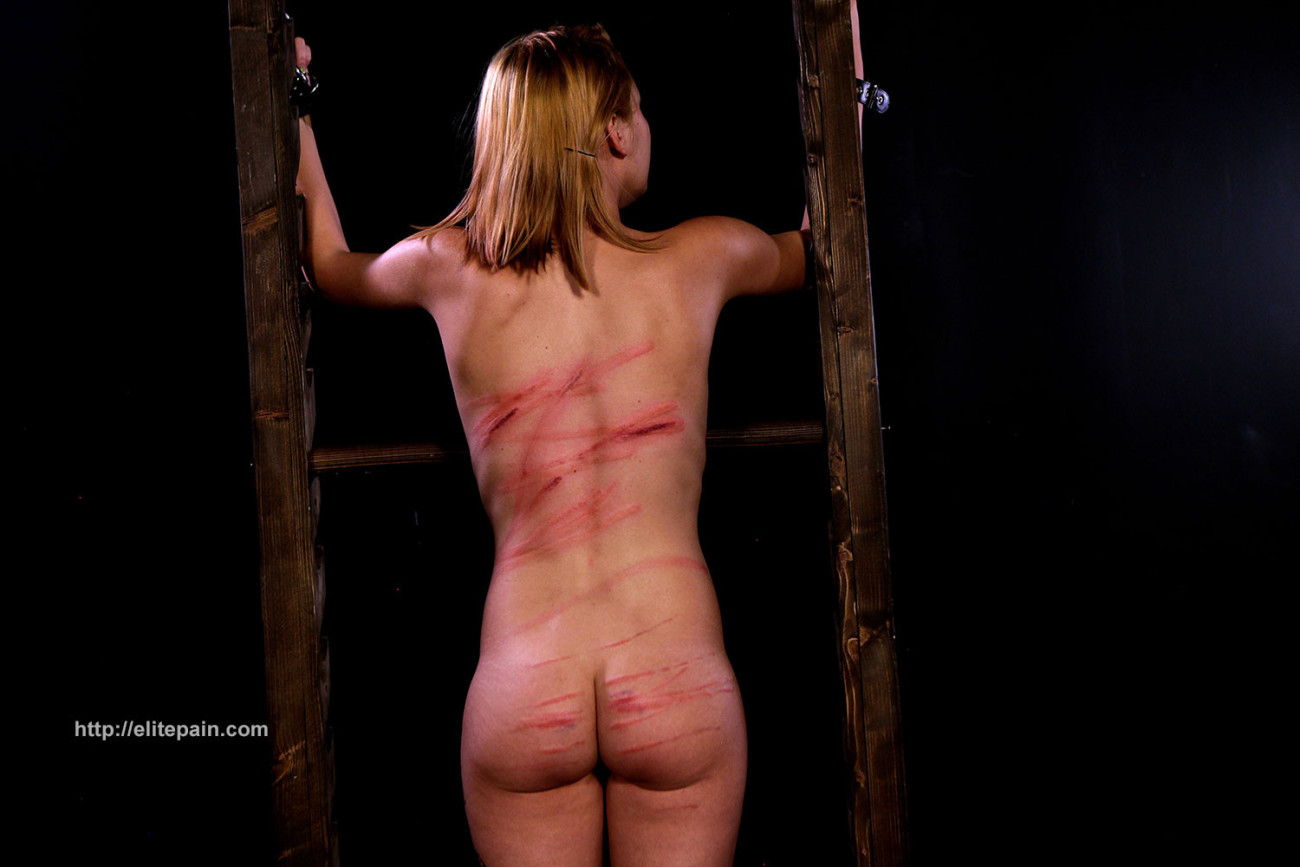 Wheel of yearn 11 featuring slave..